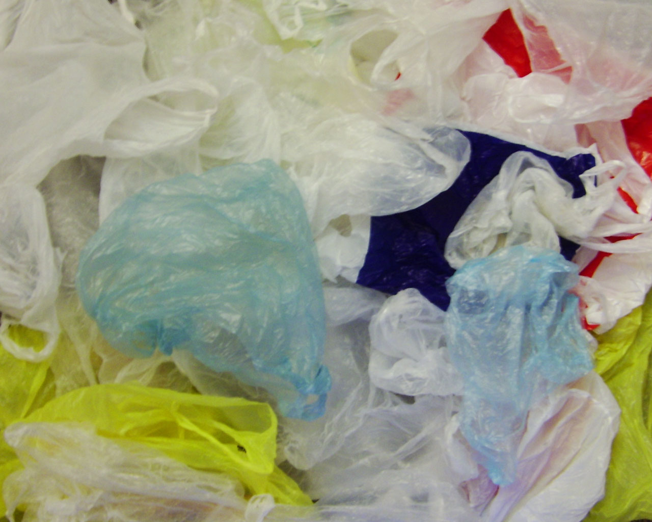 New Jersey Bill Proposes Strictest Plastic Ban In the Nation