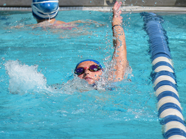 Pomona Looks to Remain at the Top in Tri-County Swimming