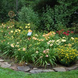 Falcon Turn Daylily Garden Earns Honors