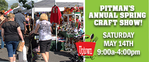Greater Pitman - Craft Show 300 x 125